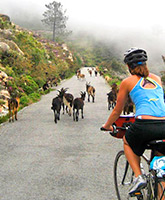 Pyrenees and Costa Brava biking photo
